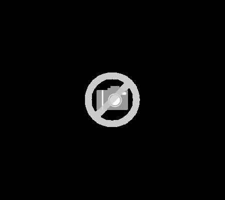 BRB260176WWEF SAMSUNG Inbouw koelkasten vanaf 178 cm